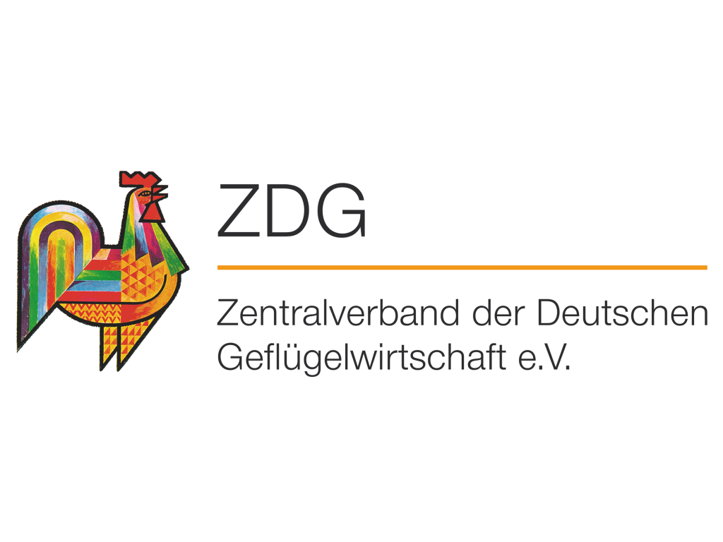 ZDG logo wordmark